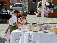 Svatoantonínský jarmark na mělnickém náměstí Míru přilákal v sobotu nejen místní, ale dokonce i turisty ze zahraničí.
