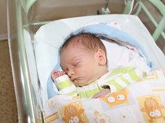 Filip Šebek se narodil rodičům Olze Macháčkové a Tomáši Šebkovi z Tišic 11. prosince 2017 v mělnické porodnici, měřil 51 cm a vážil 3,44 kg. Doma na něj čeká již starší sourozenec