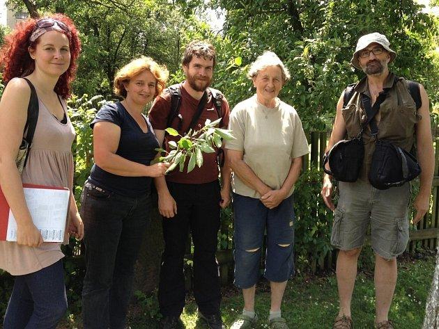 Odborníci na Mšensku a Kokořínsku pátrali po starých odrůdách třešní.