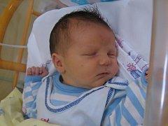 Václav Holoubek se rodičům Julii Preibišové a Petru Holoubkovi z Libkovic narodil v mělnické porodnici 14. srpna 2014, vážil 3,57 kg a měřil 51 cm. Na brášku se těší 8letá dvojčata Tereza a David.