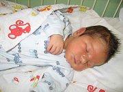 Adam Brodský se rodičům Šárce a Janovi z Ovčár narodil 29. června 2008, vážil 3,95 kg a měřil 51 cm. Na brášku se těší 8letý Honzík.