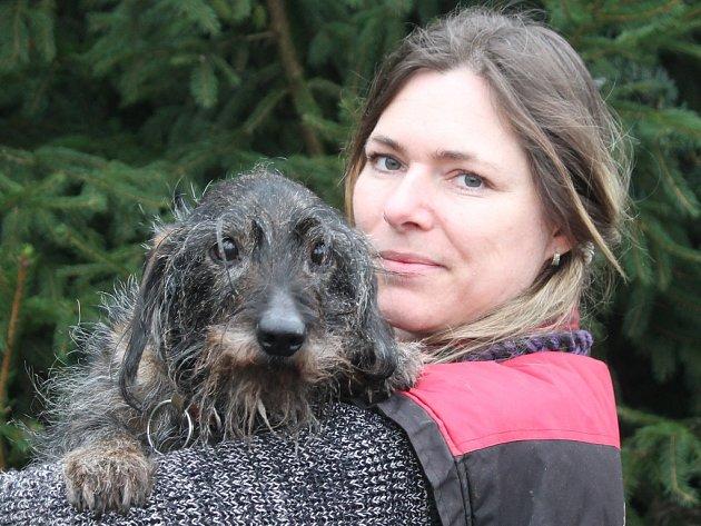 Jaroslava Tichá z mělnického útulku má v péči pěknou řádku psích seniorů. Jedním z nich je i Buřtík, desetiletý drsnosrstý jezevčík, který žije v útulku od loňského listopadu. Vyžaduje svůj klid, občas bývá nevrlý.