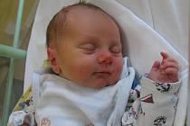 Vojtíšek Podroužek se rodičům Janě a Mirkovi z Mělníka narodil v mělnické porodnici 15. února 2016, vážil 3 kg a měřil 51 cm.