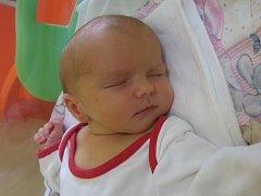 Jan Žitník se rodičům Michaele Rosenbergové a Janu Žitníkovi z Mělníka narodil v mělnické porodnici 3. července 2014, vážil 3,13 kg a měřil 47 cm.
