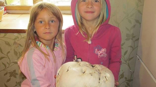 Velkou pýchavku našly sestry Michalka a Anička na dvorku domu v Kadlíně u Mšena.