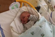 Sebastian Bárta, Losiny. Narodil se 9. 4. 2019 Tereze Bártové, po porodu vážil 3140 g a měřil 49 cm.