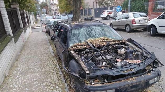 Nová pravidla by uvítali také strážníci městské policie na Mělnicku.