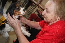 Tara dělá radost obyvatelům mělnického centra seniorů.