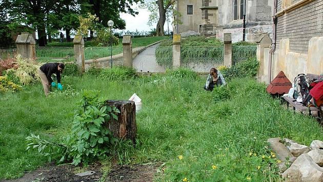 Zahrada u mělnického probošství.