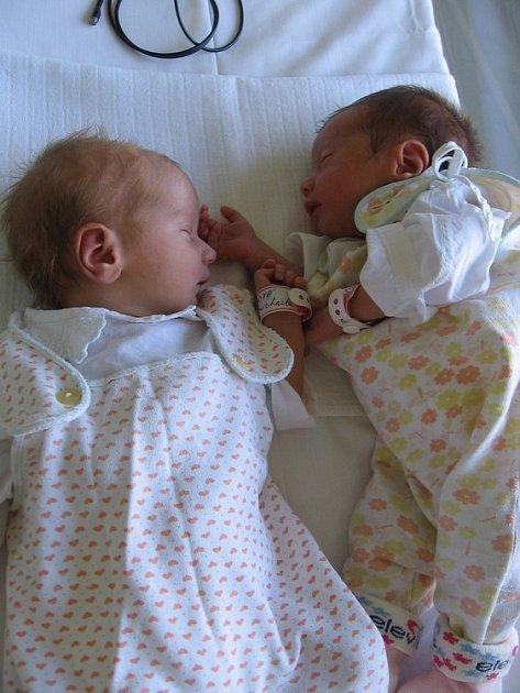 Michaela a Eliška Votavovy se rodičům Jaroslavě a Martinovi ze Všestud narodily 17. dubna 2008. Michaela vážila 2,20 kg a měřila 46 cm a Eliška vážila 2,05 kg a měřila 45 cm.