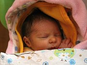 Barbora Metelková se rodičům Lucii a Patrikovi zHoštky narodila vmělnické porodnici 3. dubna 2017, vážila 2,58 kg a měřila 47 cm. Na sestřičku se těší 10letá Natálie a 7letý Patrik.