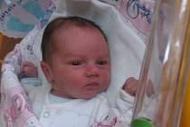 Jan Šafrata se rodičům Andree a Janovi z Mělníka narodil v mělnické porodnici 4. února 2014, vážil 3,63 kg a měřil 51 cm.