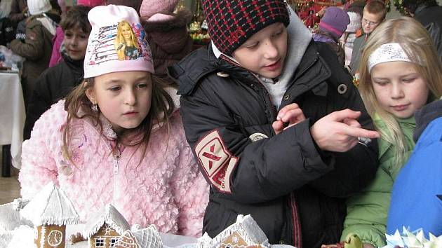 Výstava Vánoce s květinou v Domě dětí a mládeže v Neratovicích.