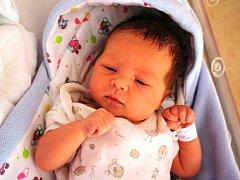 Leontýna Hanzesová se rodičům Kateřině a Robertovi z Neratovic narodila v neratovické porodnici 22. července 2015, vážila 3,12 kg a měřila 48 cm.