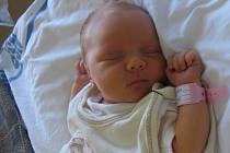 Adélka Šafránková se rodičům Lucii Štěpánkové a Jakubu Šafránkovi z Neratovic narodila v mělnické porodnici 9. srpna 2013, vážila 2,75 kg a měřila 46 cm. Na sestřičku se těší 2letý Davídek.
