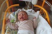 Alice Benčová, Praha - Letňany. Narodila se 9. 4. 2019, po porodu vážila 3950 g a měřila 53 cm. Rodiče jsou Veronika a Václav Benčovi. Sestra se jmenuje Ema.