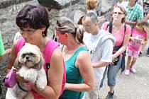 Na hradě Kokořín jsou s návštěvníky vítáni i psi.