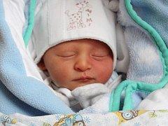 Dominik Milota se rodičům Michaele Reisichové a Janu Milotovi z Kojetic narodil 24. ledna 2018, vážil 2,40 kg a měřil 46 cm.