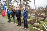 """Také letos by měl pokračovat projekt """"Adoptuj mělnický strom"""", který město vloni zahájilo ve spolupráci se spolkem P.U.N.K. (park-ulice-náměstí-krajina)."""
