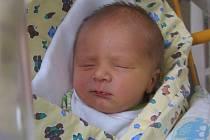 Tomáš Šebek se rodičům Olze Macháčkové a Tomáši Šebkovi z Kozel narodil v mělnické porodnici 18. února 2016, vážil 3,08 kg a měřil 49 cm.