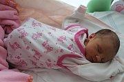 KAROLÍNA NEDVĚDOVÁ se rodičům Lucii Nedvědové a Davidu Malinovskému z Hostivic, narodila v mělnické nemocnici 16. 4. 2018, vážila 2,590 kg, měřila 48 cm.