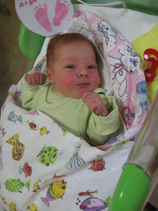Anna Dvořáková se rodičům Petře Wasyliwové a Václavu Dvořákovi ze Mšena narodila v mělnické porodnici 13. ledna 2015, vážila 3,08 kg a měřila 49 cm.