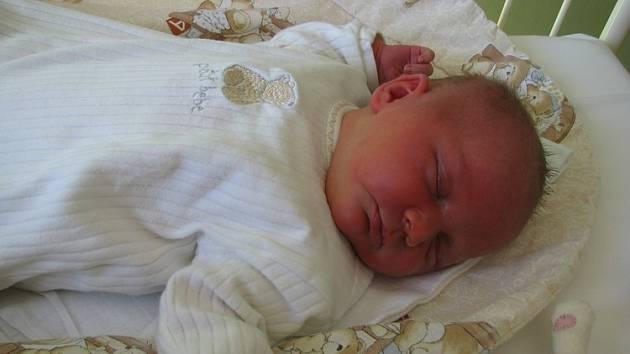 Karolína Dvořáková se rodičům Petře a Petrovi z Mělníka narodila 3. března 2008, vážila 3,65 kg a měřila 50 cm. Na sestřičku se těší 8letá Barborka.