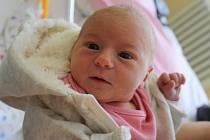 Emílie Mezerová se rodičům Sabině Fedačkové a Martinu Mezerovi z Káraného narodila v mělnické porodnici 22. ledna 2016, vážila 3,19 kg a měřila 50 cm.