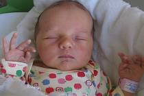 Natálie Žižková se rodičům Anetě Sedlákové a Liboru Žižkovi z Mělníka narodila v mělnické porodnici 1. března 2013, vážila 3,36 kg a měřila 50 cm. Na sestřičku se těší 1,5letý Dominiček.
