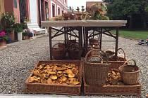 """Již devátý ročník tradičního Houbobraní se uskuteční v sobotu 21. září na zámku v Lobči. Vášniví sběratelé hub tak dostanou v rámci akce příležitost porovnat své """"kousky"""" v zábavné soutěži."""