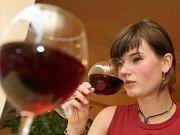 Loňský první ročník vinobraní zahájily na vinici dívky v dobových kostýmech.