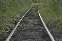 Oslavy výročí lokálky vyvrcholí ve Mšeně jízdami zvláštních parních vlaků dne 14. července 2007.