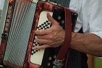 akordeon - ilustrační