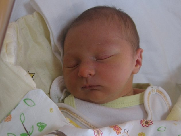 Viktorie Andělová se rodičům Lucii Andělové a Radimu Uřidilovi z Počeplic narodila v mělnické porodnici 28. ledna 2017, vážila 3,40 kg a měřila 52 cm.