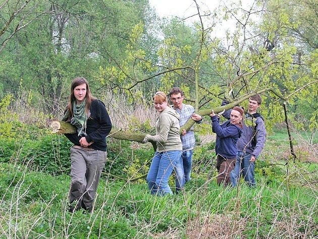 S odnášením velkých větví pomáhala svým spolužákům i děvčata.