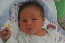 Matyáš Hamburg se rodičům Sandře Hokešové a Adamu Hamburgovi z Mělníka narodil v mělnické porodnici 2. listopadu 2016, vážil 3,39 kg a měřil 52 cm.