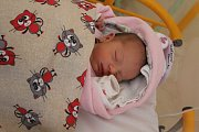 Veronika Plačková se rodičům Věře a Petrovi z Kokořína narodila 18. října v mělnické porodnici, vážila 3,05 kilogramu a měřila 50 centimetrů. Doma se na ni těší 8letá Nelinka a 4letý Tomášek.