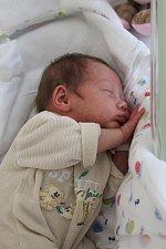 Michaela Polanecká se rodičům Veronice Zelenkové a Radku Polaneckému z Brozan nad Ohří narodila v mělnické porodnici 13. prosince 2017, měřila 47 cm a vážila 2,09kg.