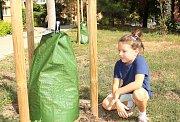 Vaky ze speciálního slunci odolného polyetylenu zelené barvy, které pojmou přibližně šedesát litrů vody.