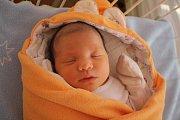 Adam An Vu se rodičům Dagmaře Kubíkové a Huu Ba Vu z Prahy narodil neratovické porodnici 13. února 2017, vážil 3,31 kg a měřil 48 cm. Na brášku se těší 5letá Natalie a 22letá Jana.