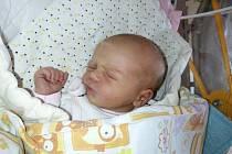 Alžbětka Koutenská se rodičům Jitce a Pavlovi z Chloumku narodila v mělnické porodnici 9. listopadu 2016, vážila 3,41 kg a měřila 50 cm. Na sestřičku se těší 2letá Pavlínka.