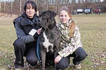 Donny je podle Petry Štefaniskové a její dcerky Adélky spíš mazel, než zlý pes.