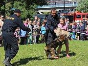 V Kralupech posledních pět dní slavili místní tradiční Dny Kralup. Den bezpečnosti byl jedním z hlavních lákadel celého festivalu především pro ty nejmenší.