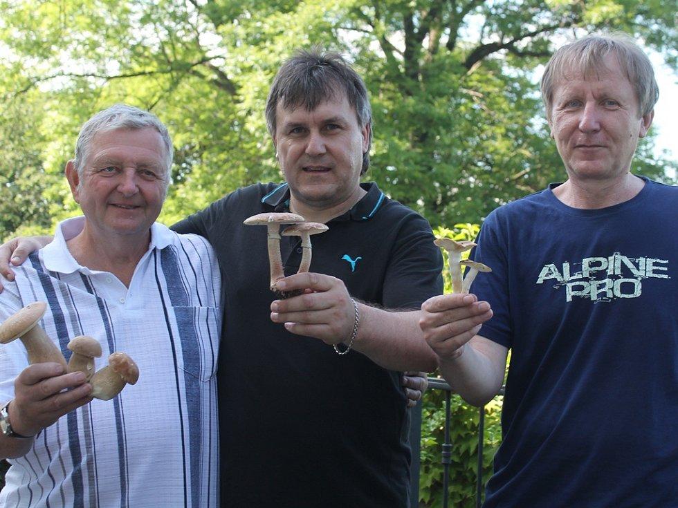 Mykologové  (zleva) Pavel Hruška, Jaroslav Malý a Dan Kvasnička s houbami z českých lesů, nalezenými na sklonku letošního jara.