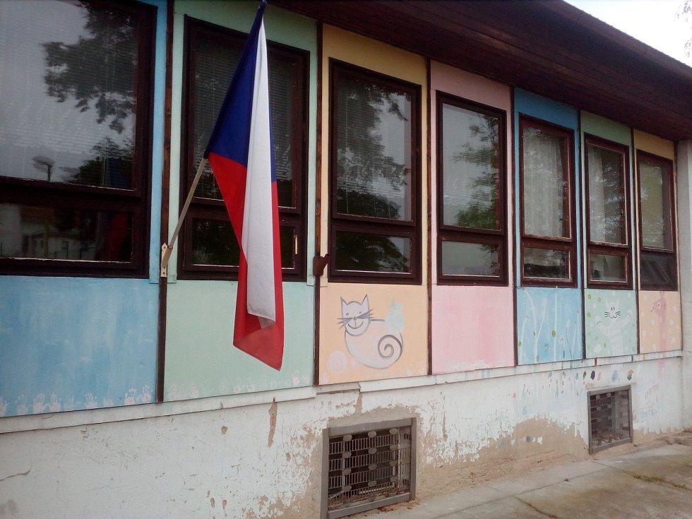Volby v Zárybech.