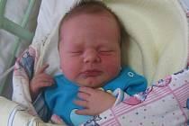 Václav Geiger se rodičům Kristýně Hazdrové a Václavu Geigerovi ze Sudova Hlavna narodil v mělnické porodnici 15. února 2014, vážil 3,50 kg a měřil 50 cm.