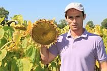 Mezi plodinami, které na sklizeň teprve čekají, jsou podle Michala Fialy z Jelenice cukrovka,  kukuřice a slunečnice. Té se prý letos celkem dařilo.