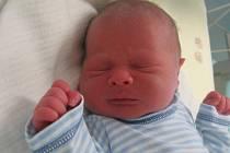 Patrik Neuman se rodičům Michaele Neumanové a Davidu Dančovi z Mělnického Vtelna narodil 29. února 2012, vážil 3,22 kg a měřil 49 cm.