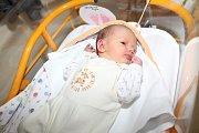 Sofie Sourová se rodičům Anetě Volfové a Viktoru Srourovi z Veltrus narodila 14. prosince v mělnické porodnici, měřila 47 cm, a vážila 2,83 kg