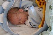 TOBIÁŠ (na snímku) A MATYÁŠ NETÍKOVI se rodičům Tereze a Miroslavovi z Čečelic narodili 7. března 2018 v mělnické porodnici. Tobiáš vážil 1,9 kg a měřil 42 cm. Matyáš vážil 2,43 kg a měřil 44 cm.